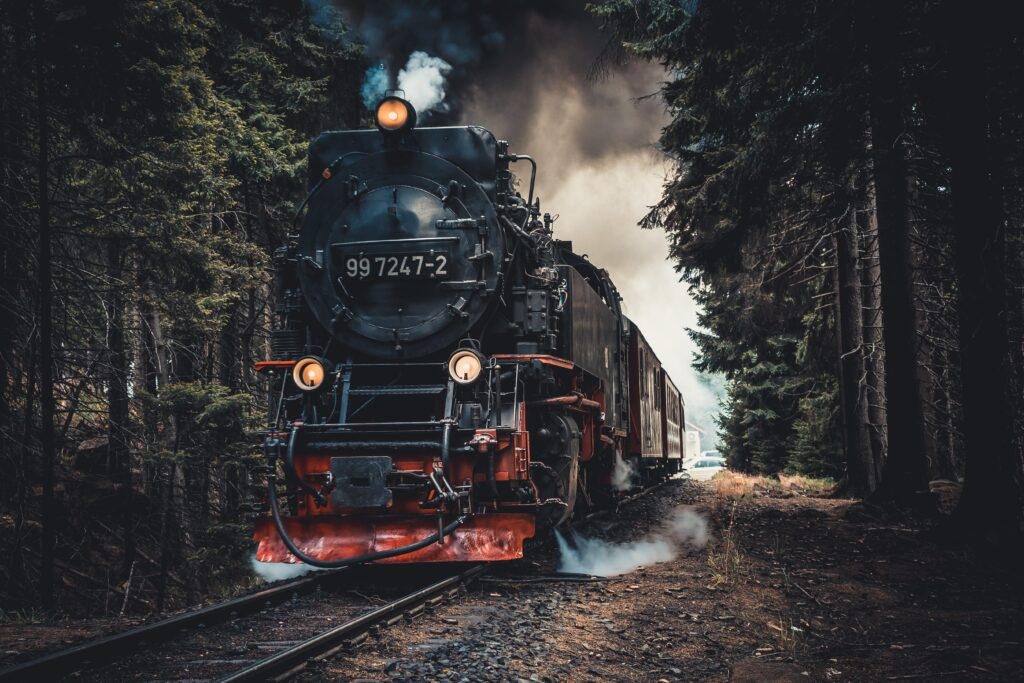 picture of locomotive and tracks in the forest